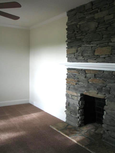 den-fireplace